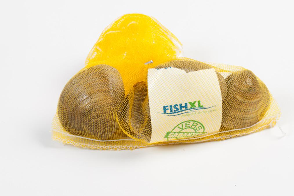 Groothandel-vis-FishXL-schelpdieren-clams_WL_9474