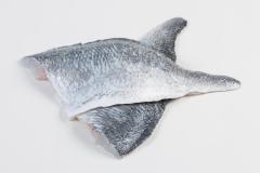 Groothandel-vis-FishXL-vis-dorade_WL_9127