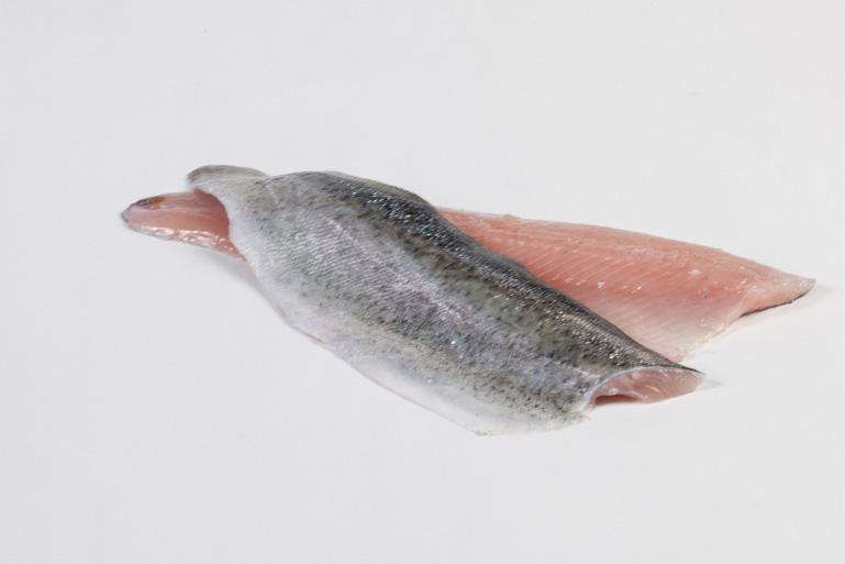 Groothandel-vis-FishXL-vis-forelfilet_WL_9130