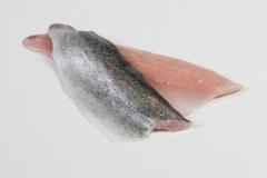 Groothandel-vis-FishXL-vis-forelfilet_WL_9132