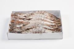 Groothandel-vis-FishXL-schaaldieren-gamba_WL_9671