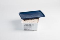 Groothandel-vis-FishXL-schaaldieren-grijze-garnaal_WL_9433