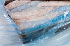 Groothandel-vis-FishXL-vis-heekfilet_WL_9750