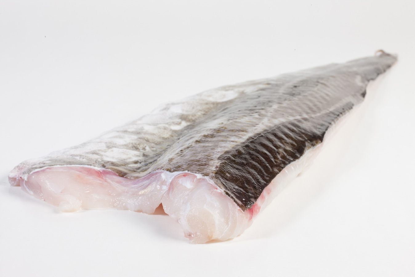 Groothandel-vis-FishXL-vis-kabeljauwfilet_WL_9190