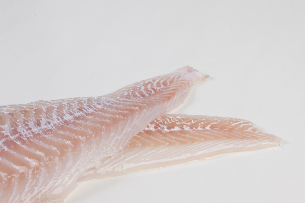 Groothandel-vis-FishXL-vis-kabeljauwfilet_WL_9203