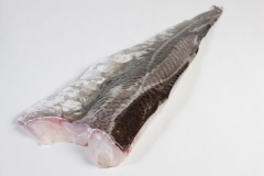 Groothandel-vis-FishXL-vis-kabeljauwfilet_WL_9189