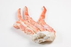 Groothandel-vis-FishXL-schaaldieren-kingkrab_WL_9803