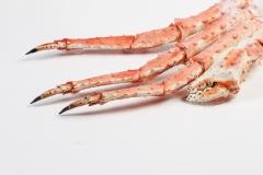 Groothandel-vis-FishXL-schaaldieren-kingkrab_WL_9805
