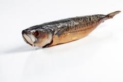 Groothandel-vis-FishXL-vis-gerookte-makreel_WL_9395