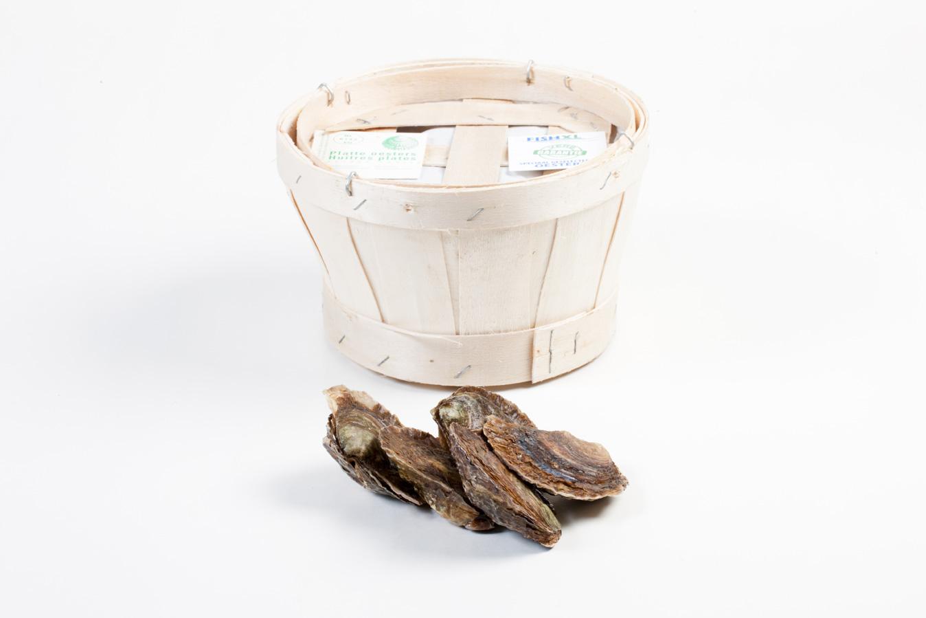 Groothandel-vis-FishXL-schelpdieren-zeeuwse-platte-oesters_WL_9837