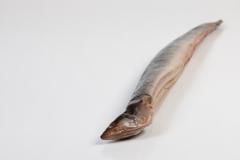 Groothandel-vis-FishXL-vis-gerookte-paling_WL_9530
