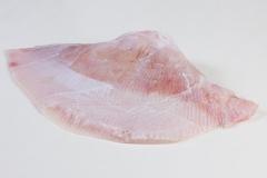 Groothandel-vis-FishXL-vis-rogvleugel_WL_9266