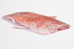 Groothandel-vis-FishXL-vis-roodbaarsfilet_WL_9598