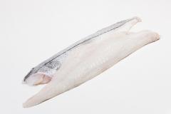 Groothandel-vis-FishXL-vis-geschubde-schelvisfilet_WL_9595