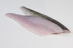 Groothandel-vis-FishXL-vis-snoekbaars_WL_9309