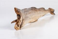 Groothandel-vis-FishXL-vis-stokvis_WL_9218