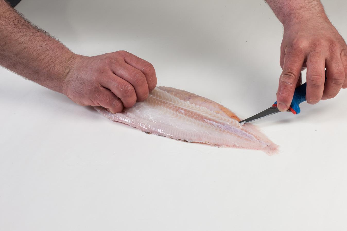 Groothandel-vis-FishXL-vis-tong_WL_9166