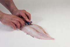 Groothandel-vis-FishXL-vis-tong_WL_9163