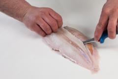 Groothandel-vis-FishXL-vis-tong_WL_9165
