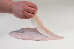 Groothandel-vis-FishXL-vis-tong_WL_9168