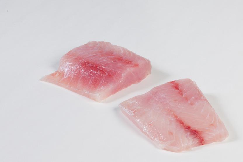 Groothandel-vis-FishXL-vis-victoriabaarsfilet_WL_9289