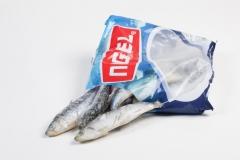 Groothandel-vis-FishXL-vis-sardienen_WL_9794