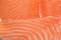 Groothandel-vis-FishXL-vis-gerookte-zalm_WL_9544