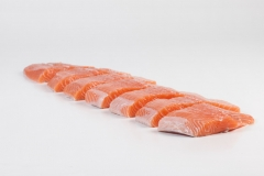 Groothandel-vis-FishXL-vis-zalm_WL_9087