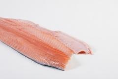 Groothandel-vis-FishXL-vis-zalmfilet_WL_9060