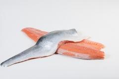 Groothandel-vis-FishXL-vis-zalmfilet_WL_9065
