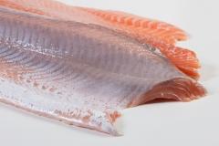Groothandel-vis-FishXL-vis-zalmfilet_WL_9068