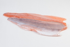 Groothandel-vis-FishXL-vis-zalmfilet_WL_9072