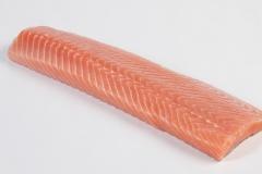 Groothandel-vis-FishXL-vis-zalmfilethaas_WL_9075
