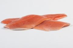 Groothandel-vis-FishXL-vis-zalmforel_WL_9052