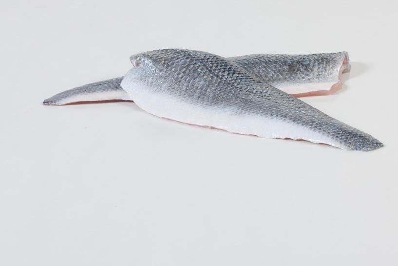 Groothandel-vis-FishXL-vis-zeebaars_WL_9009