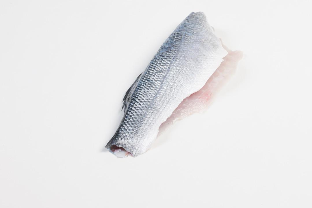 Groothandel-vis-FishXL-vis-zeebaars_WL_9634
