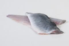 Groothandel-vis-FishXL-vis-zeebaars_WL_9011