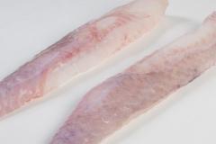 Groothandel-vis-FishXL-vis-zeeduivel_WL_9269